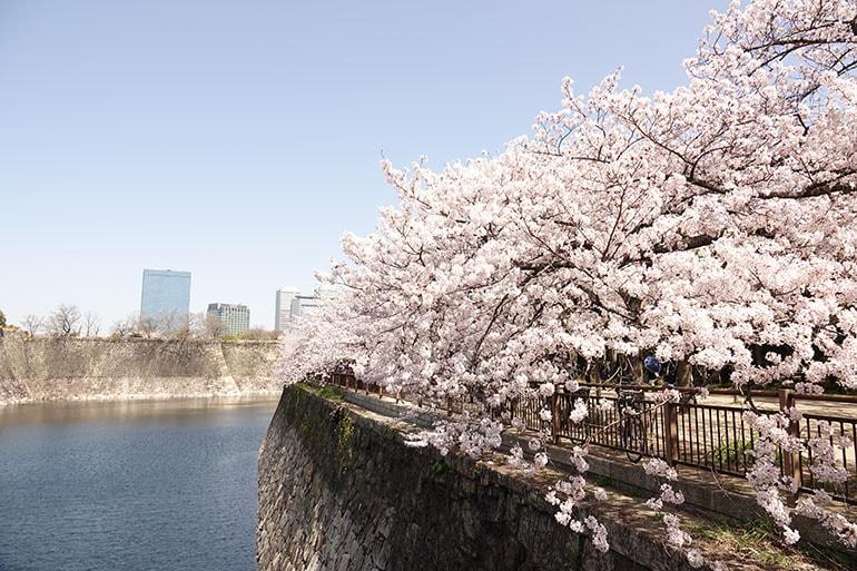 桜をキレイに撮る5つのポイント_13