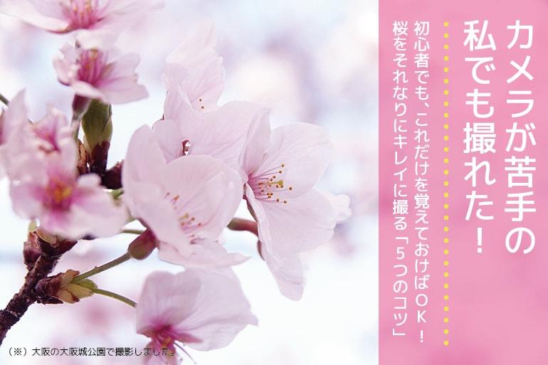 桜をキレイに撮る5つのポイント_1