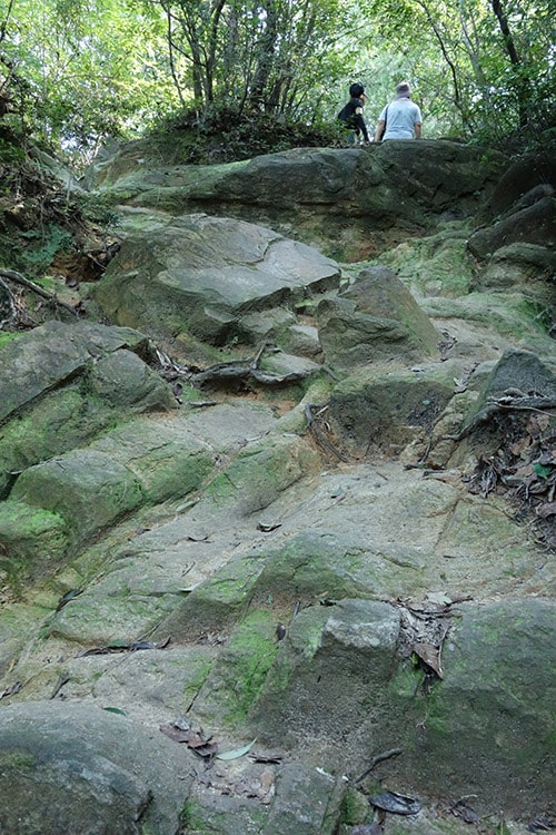 生駒山麓フィールドアスレチック「生駒山麓フィールドアスレチック「アカンドウの門から山のぼり(大門町)」その4